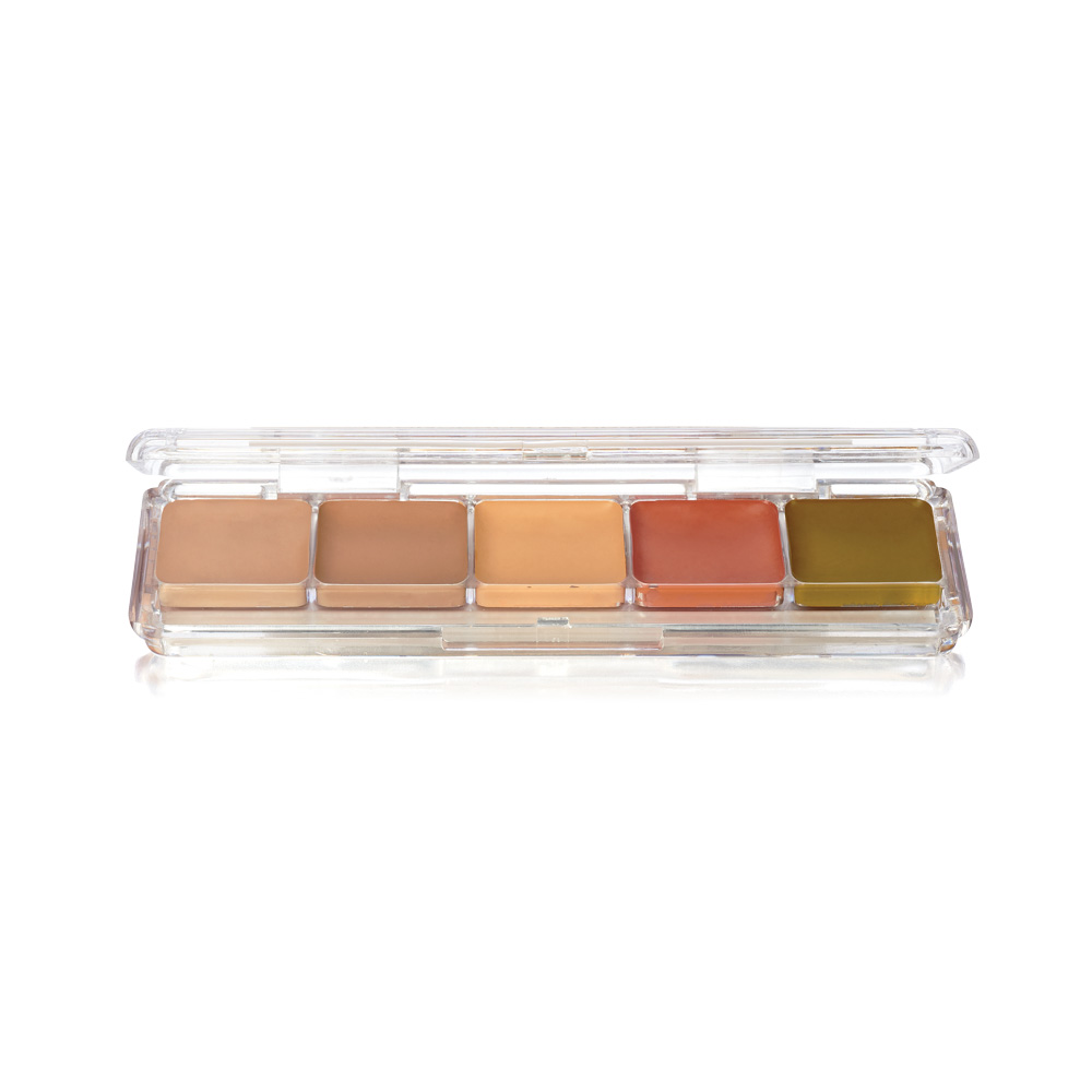 Concealer & Adjuster Alcohol Palette (AAP-23)