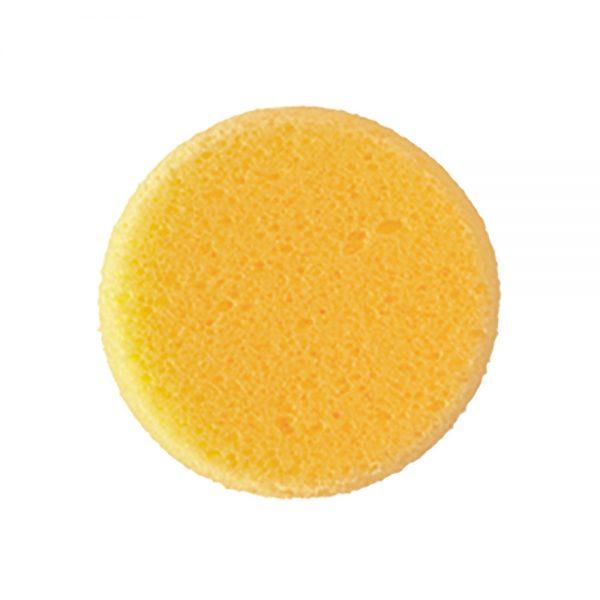 Hydra Sponge Small