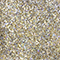 LD-310 Gold Prism